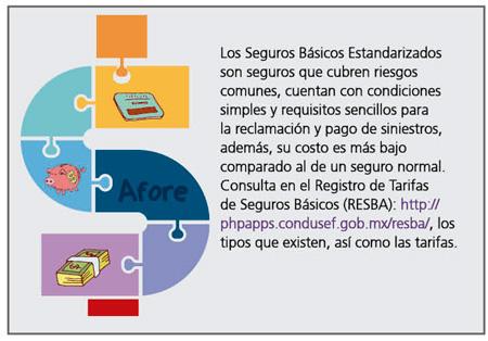 basicos5