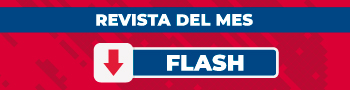 descarga flash
